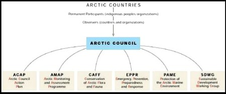 arctic council structure