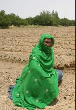 Zubair gran pakistan usaid